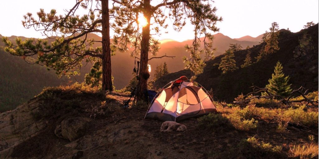 a shady spot to pitch a tent