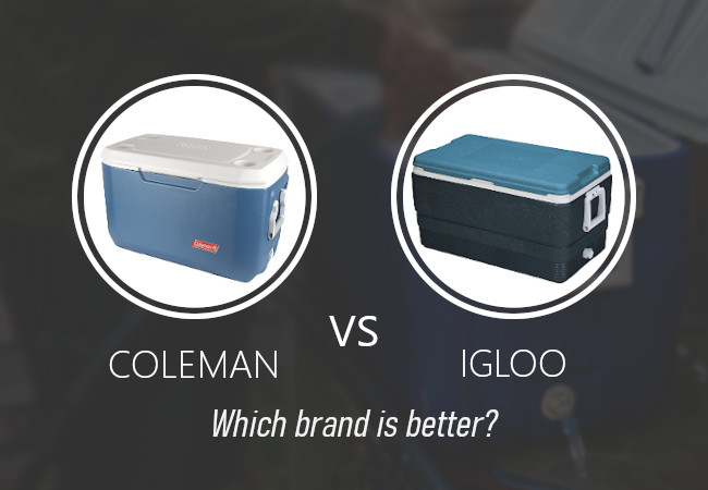 coleman vs igloo